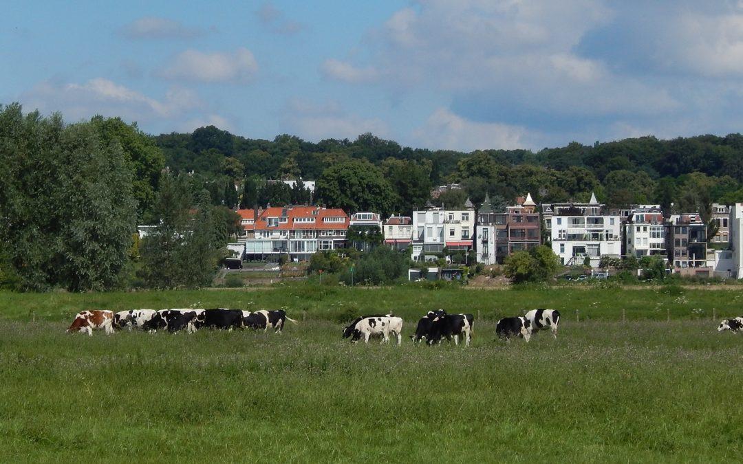 Stadspark en natuurgebied voor iedereen