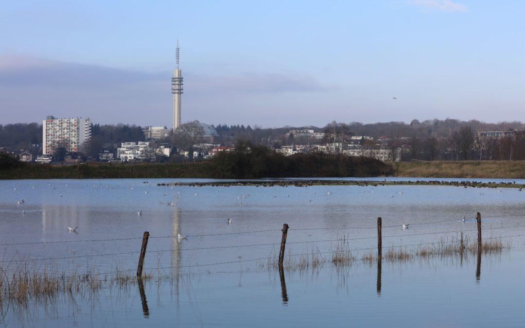 Stadsblokken-Meinerswijk: in beroep